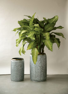 Corrugated Metal Planters