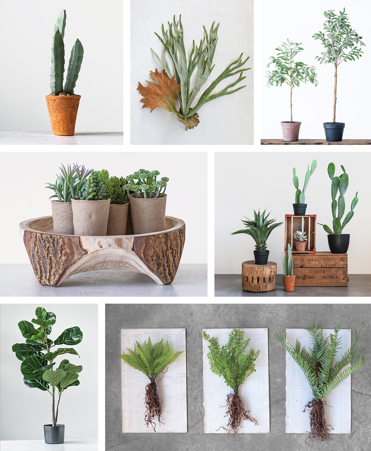 Indoor Plants-Faux Botanicals